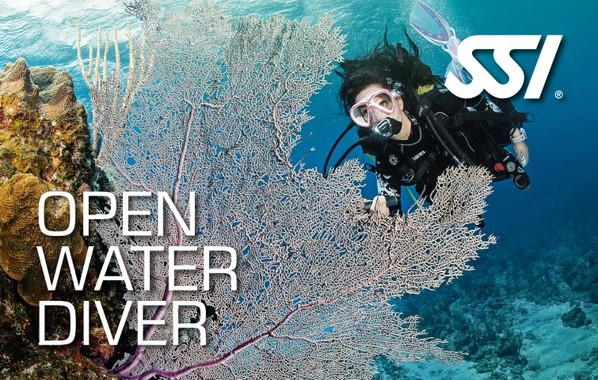 SSI Open Water Diver basic